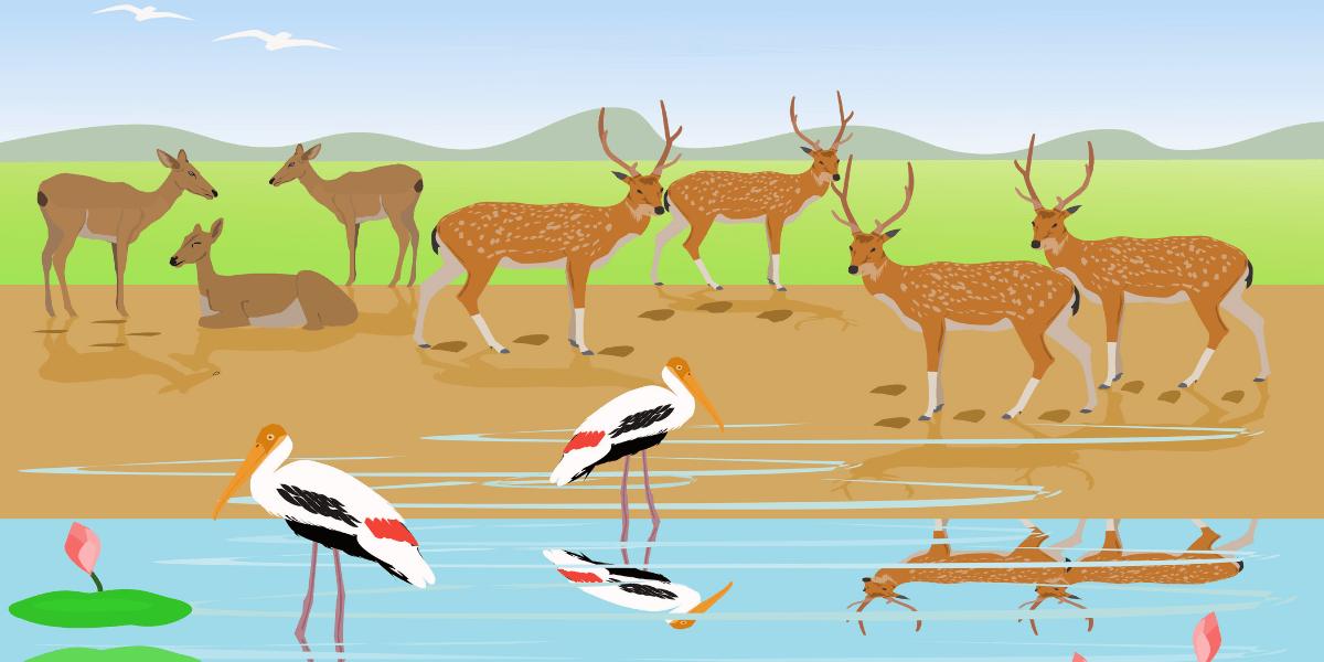 बक-कर्कटक-कथा | The Stork and the Crab Story