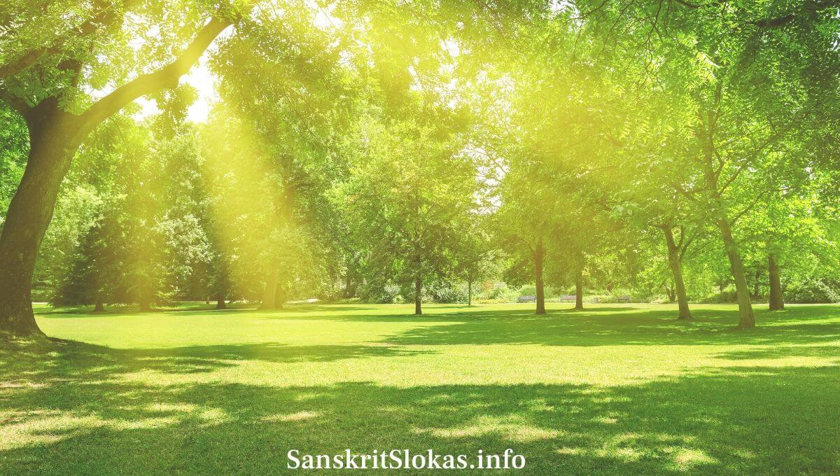 Sanskrit Essay on Garden